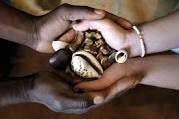 Sangoma traditional medicine and Spiritual cleansing +27739970300 anwar sadat
