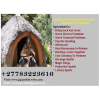 African Famous Traditional Herbalist Healer +27783223616 {Luck ~Love ~Business and Relationships}